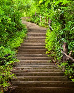 Les miracles de l'escalier